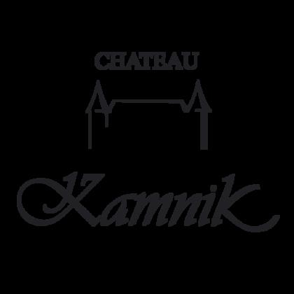 Слика за винаријата Chateau Kamnik